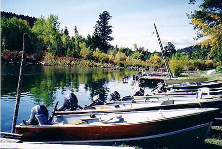 boats---yamaha-motors